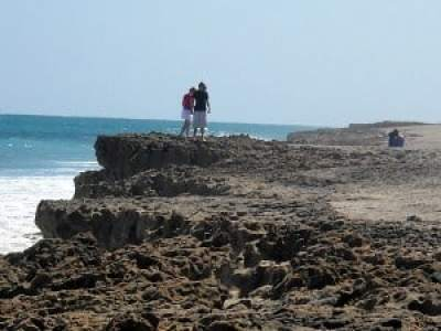 Cliffs at Blowing Rocks, Jupiter, Florida