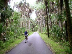 Biking through Highland Hammocks State Park