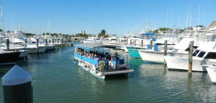 Indian River Lagoon Boat Tour
