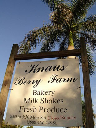 Knaus Berry Farm sign