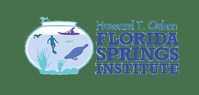 FSI Logo Color