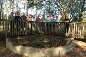 Springs Outing – Harvey Sharron Bat Cave