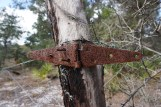 Old Fencing