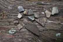 Pottery Fragments