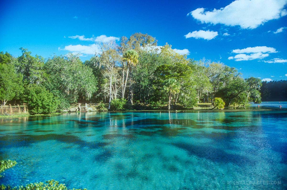 Delicieux Silver Glen Springs: A Scenic Jewel Of Ocala National Forest
