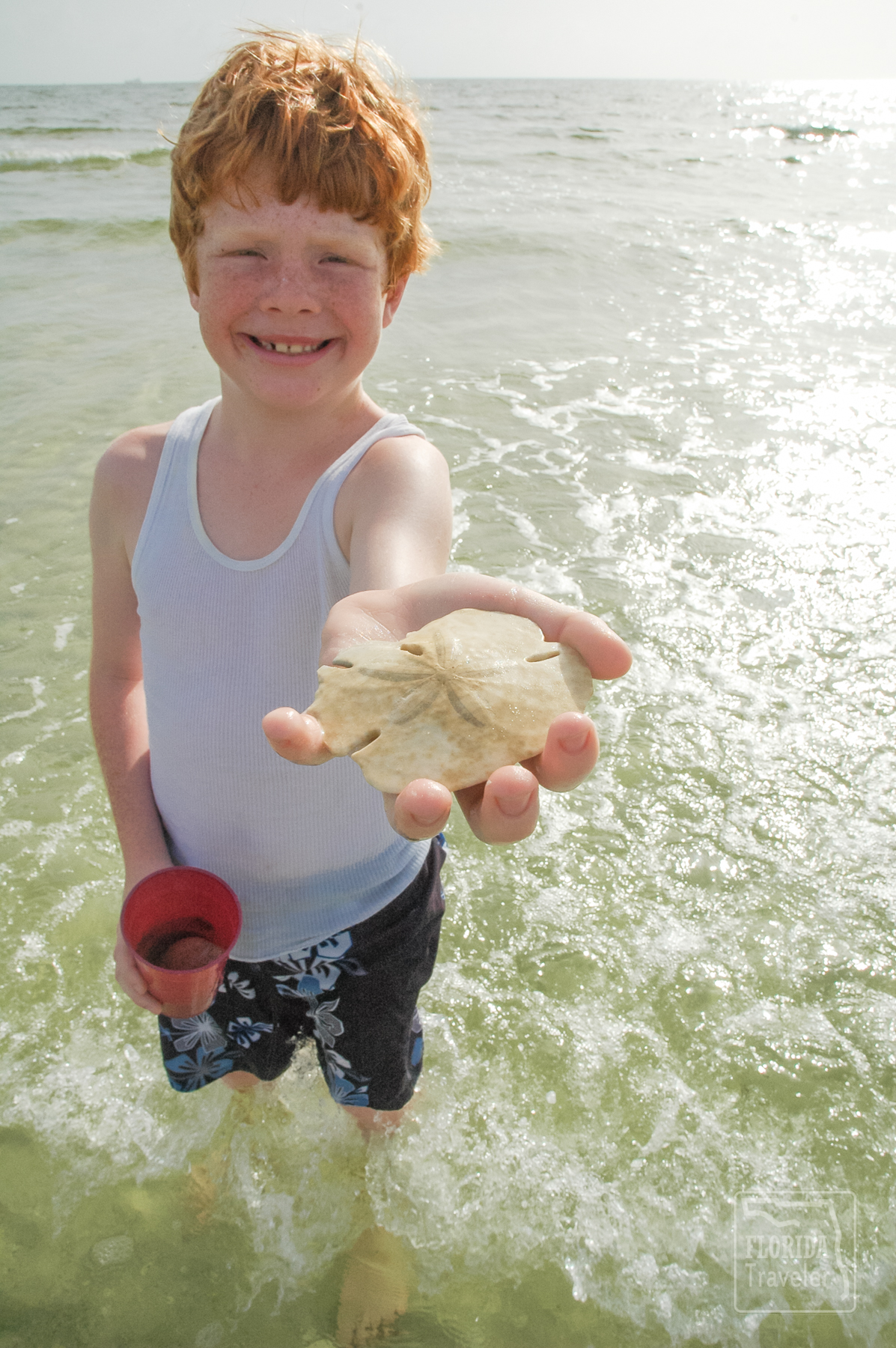 boy with sand dollar