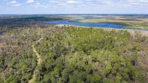 Ocklawaha Prairie