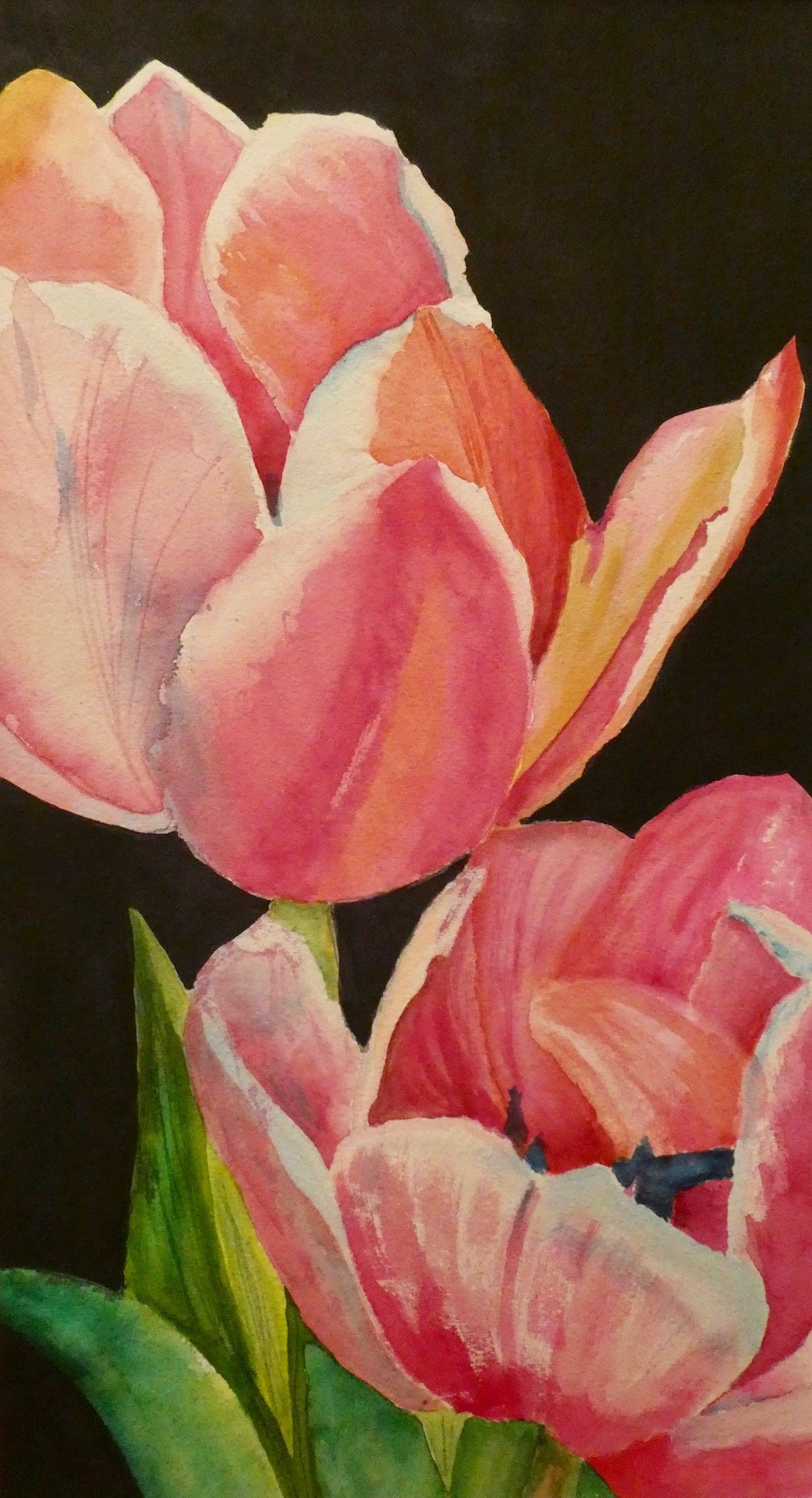 Darnall, Diane - Two Tulips