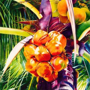 Judith Miller - Red Coconuts