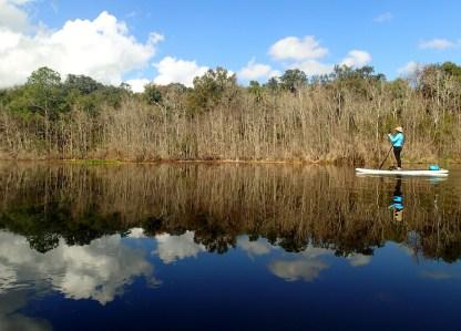 Paddleboarding on the Ocklawaha River