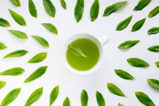 cup of healthy green tea with leaves around. Weight loss in Florida