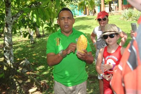 Republica Dominicana -Eco Caribe Tour-Cacao