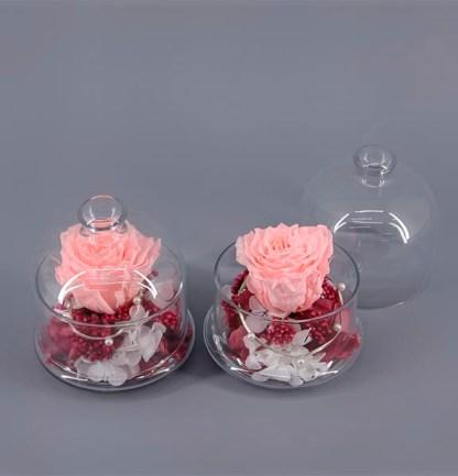 Cúpula con rosa eterna