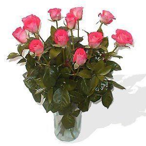 12-rosas-rosas