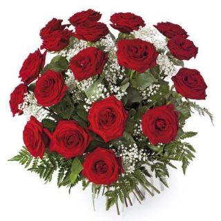 18-rosas-rojas