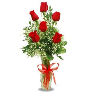6-rosas-rojas-1