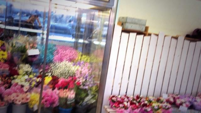 花色に映える白壁のお店を目指して