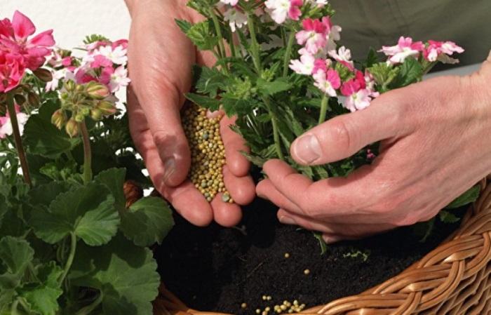 Смеси для комнатных растений