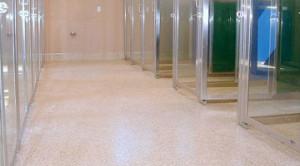 Animal  Veterinary Flooring  Concrete Epoxy Floor