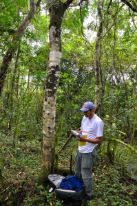 Gonzalo Rivas establishing field plots