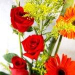 Un detalle de rosas y gerberas para Arreglos florales Tijuana - Florerias en Tijuana