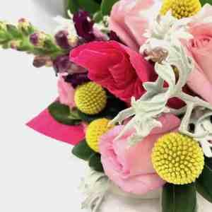 Elena - Especial La Casa de las Flores