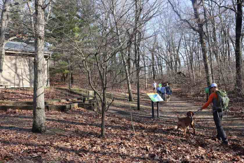 individuals walking wooded trails