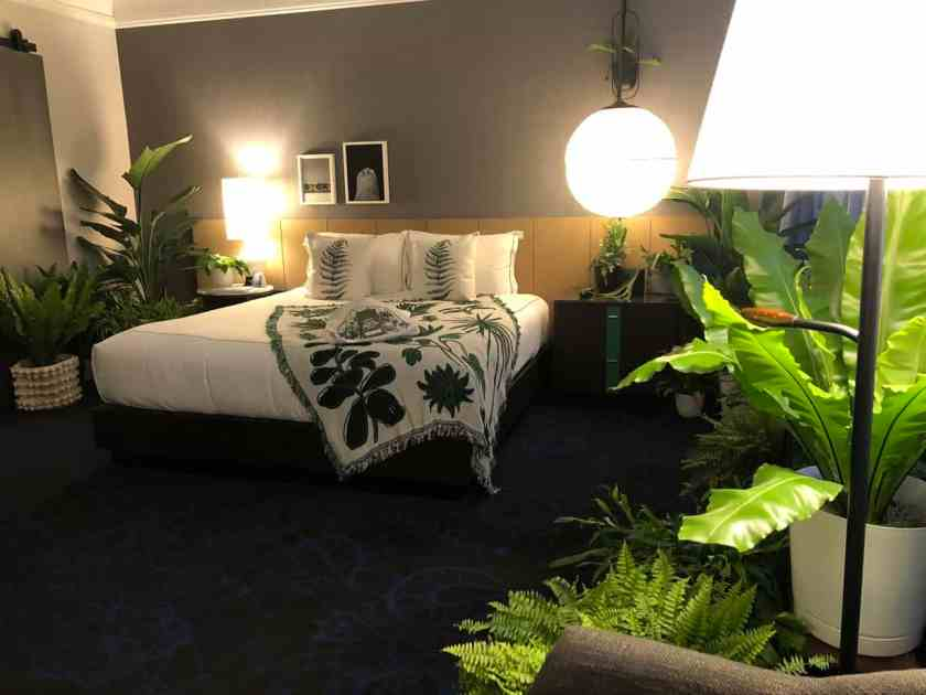 hotel room decorated with fern foliage