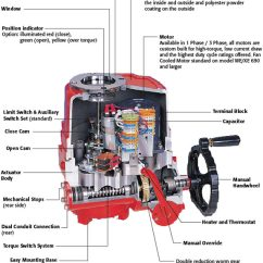Inside Of A Worm Diagram Ford Sierra Ignition Wiring Triac We/xe Electric Actuator - Flosource Inc