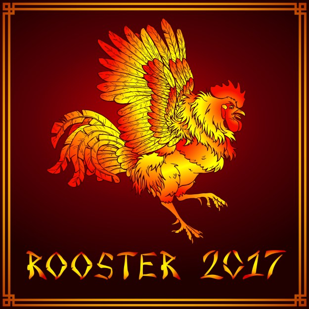 rooster-fire-rooster-2017-dreamstime_l_79920097