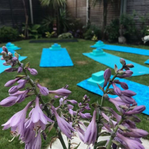 gentle garden yoga, boutique yoga studio