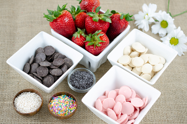 Ingredients to make chocolate covered strawberries