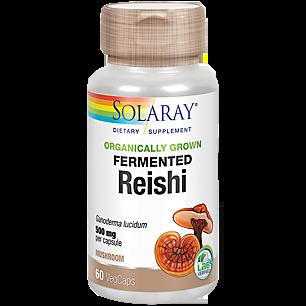 Organically Grown Fermented Reishi Mushroom - 500 MG (60 Vegetable Capsules)