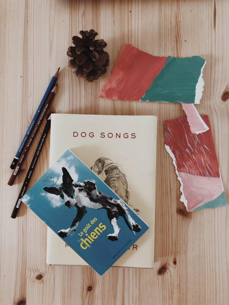 Image of books about dogs