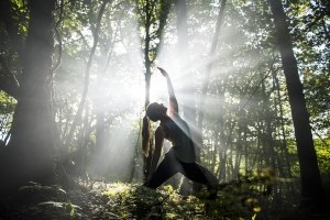 Perfect for beginners, come to our Yoga Retreat in Cornish woodlands