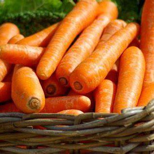 Carrots (6)