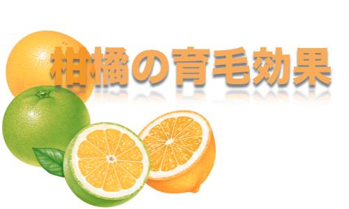 柑橘の育毛効果