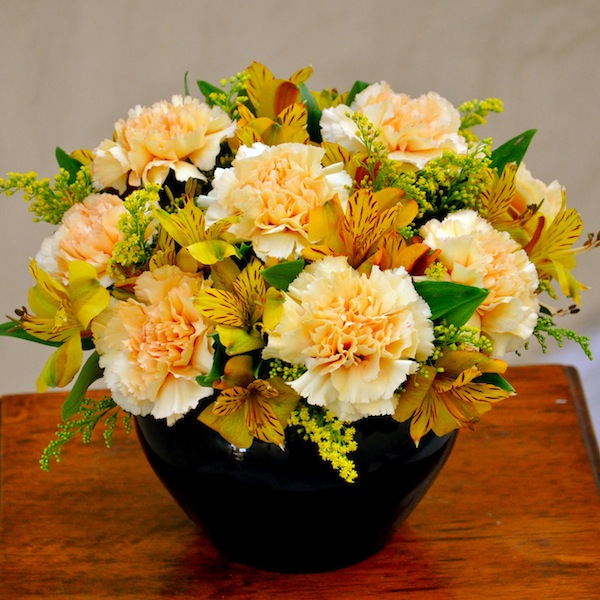Fall Flowers Rock Band Roses Take Another Gander At