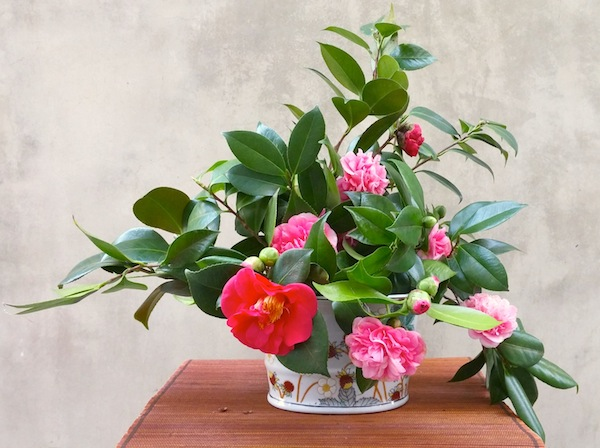 Image result for how to use camellia in floral arrangements +