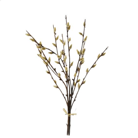 Pussy-willow-bundle-42cm