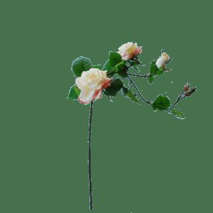 flowerdutchess-rozentak-90cm-poederroze