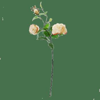 FlowerDutchess-rozen-tak-poederroze-grote-rozen