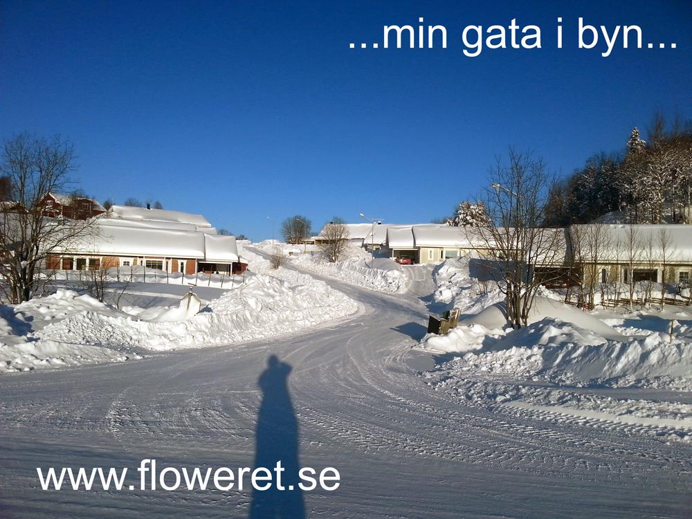 snö i saxnäs