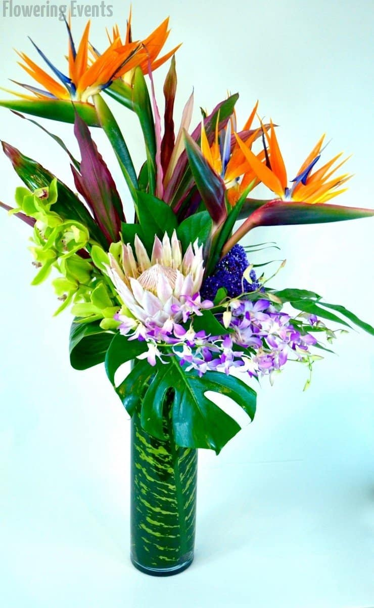 Birds of paradise, dendrobium and cymbidium orchids, and statice