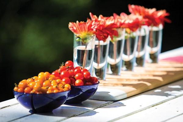 Ted Kennedy Watson Tomato Bowls