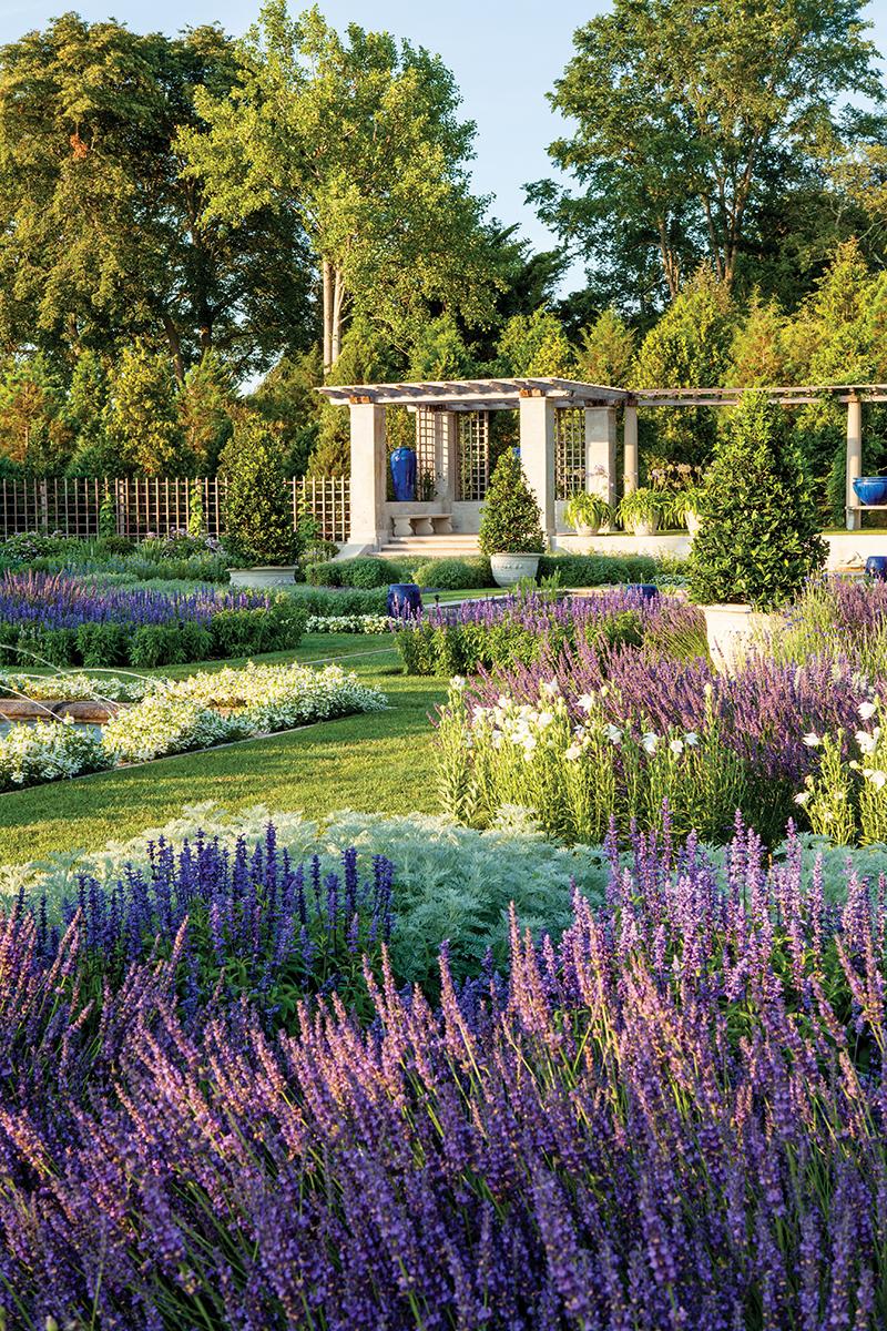 Blue Garden Renewed