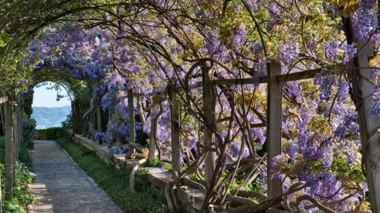 Beautiful Gardens Garden Design Garden Flowers Flower Magazine