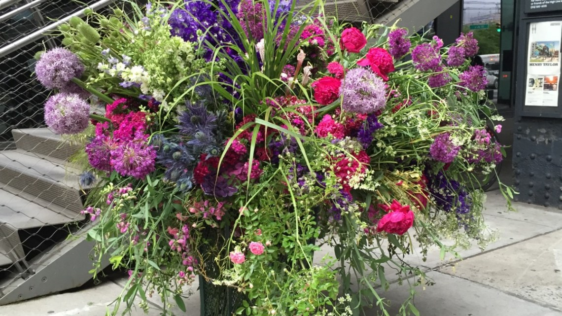 Lewis Miller's Flower Flashes - Flower Magazine