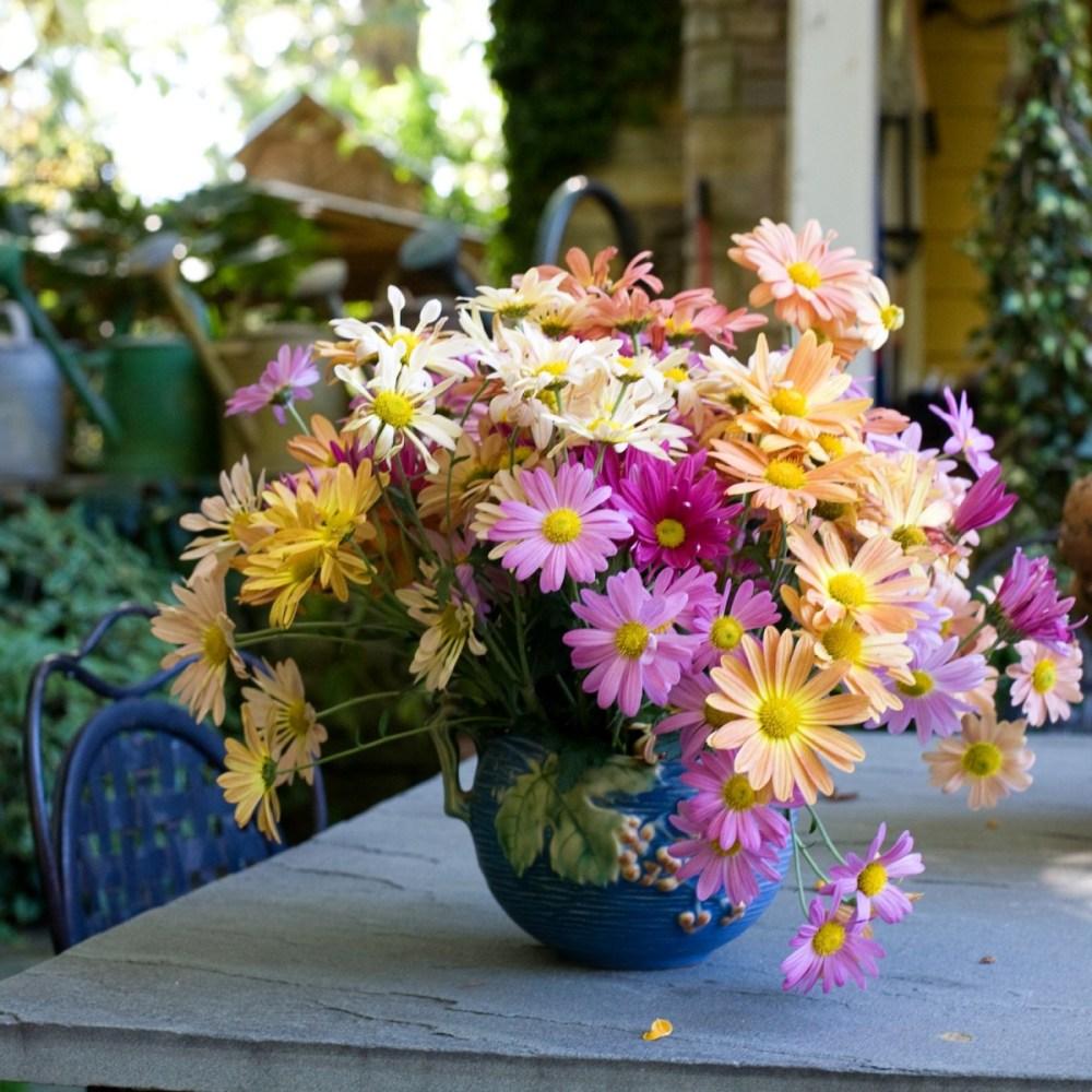 chrysanthemum flower arrangement