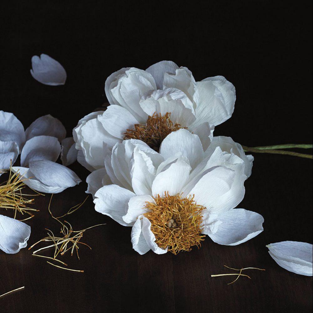 Pretty Paper Flowers Flower Magazine
